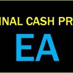 FINALCASHPROの運用成績まとめ~2014/12/05(口座破綻&運用停止報告)