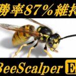 MT4EA[BeeScalper]の運用成績まとめ~2014/08/05(口座破綻&再開報告)