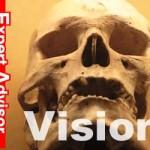【EA検証】Visionの運用成績まとめ~2015/12/26