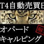 MT4EA[レオパードスキャルピング]の運用成績まとめ~2014/08/18