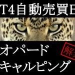 MT4EA[レオパードスキャルピング]の運用成績まとめ~2014/08/21